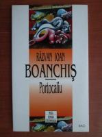 Razvan Ioan Boanchis - Portocaliu