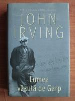 Anticariat: John Irving - Lumea vazuta de Garp