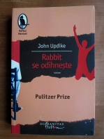 John Updike - Rabbit se odihneste