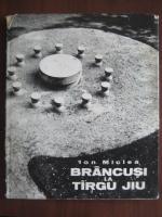 Anticariat: Ion Miclea - Brancusi la Targu Jiu (album)