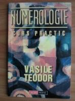 Vasile Teodor - Numerologie. Curs practic