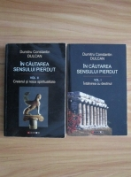 Dumitru Constantin Dulcan - In cautarea sensului pierdut (2 volume)