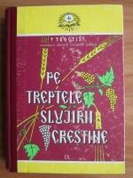 Teoctist - Pe treptele slujirii crestine (IX)