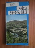 Mircea Buza - Valea Sebesului