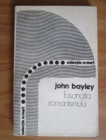 John Bayley - Fascinatia romantismului