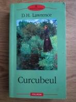 David Herbert Richards Lawrence - Curcubeul