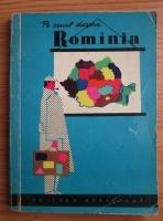 Pe scurt despre Romania