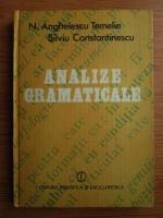 Anticariat: Nicolae Anghelescu Temelie - Analize gramaticale