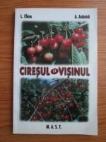 Anticariat: Lenuta Chira - Ciresul si visinul