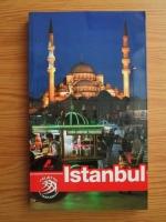Anticariat: Dana Ciolca - Istanbul