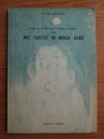 Silvia Demeter - Astazi nu se mai petrec miracole in Lavra? sau mic tratat de magie alba