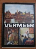 Vasile Nicolescu - Vermeer of Delft