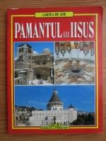 Anticariat: Cartea de aur: Pamantul lui Iisus
