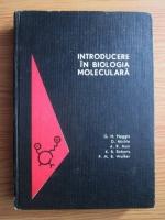 Anticariat: G. H. Haggis, D. Michie, A. R. Muir, K. B. Roberts, P. M. B. Walker - Introducere in biologia moleculara