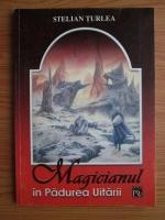 Anticariat: Stelian Turlea - Magicianul in Padurea Uitarii