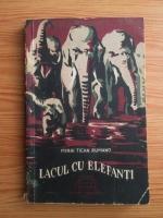 Anticariat: Mihai Tican Rumano - Lacul cu elefanti