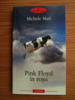 Anticariat: Michele Mari - Pink Floyd in rosu