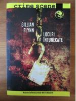 Gillian Flynn - Locuri intunecate