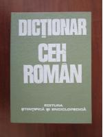 Teodora Dobritoiu - Dictionar Ceh-Roman