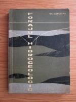 Gheorghe Costache - Forajul hidrogeologic