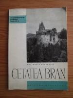 Anticariat: Ana Maria Henegariu - Cetatea Bran