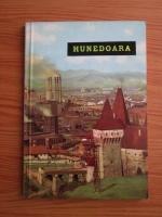 Anticariat: George Radu Chirovici - Hunedoara