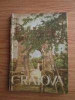 Anticariat: Ion Firu - Craiova. Ghid istoric