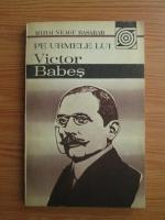 Anticariat: Mihai Neagu Basarab - Pe urmele lui Victor Babes