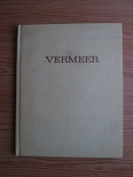 Nicolae Argintescu Amza - Vermeer van Delft