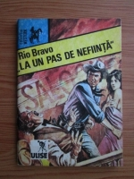 Niculae Franculescu - Rio Bravo, la un pas de nefiinta
