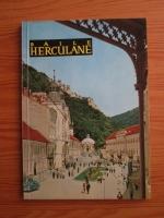 Anticariat: Petru Vintila - Baile Herculane