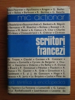 Anticariat: Angela Ion - Scriitori francezi. Mic dictionar