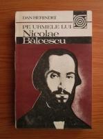 Dan Berindei - Pe urmele lui Nicolae Balcescu