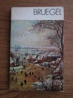 Anticariat: Michal Walicki - Bruegel