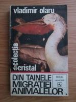 Vladimir Olaru - Din tainele migratiei animalelor