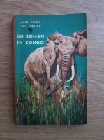 Anticariat: Aurel Lecca, Val Tebeica - Un roman in Congo