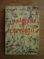 Marin Marian Balasa - Galeria cu revelatii