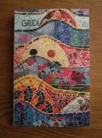 Anticariat: Gijs Van Hensbergen - Gaudi