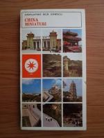 Anticariat: Haralambie Bica Ionescu - China. Miniaturi
