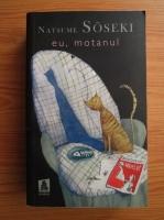 Anticariat: Natsume Soseki - Eu, motanul