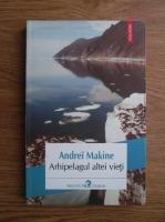 Anticariat: Andrei Makine - Arhipelagul altei vieti