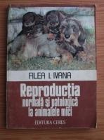 Anticariat: Filea I. Ivana - Reproductia normala si patologica la animalele mici