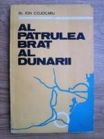 Anticariat: Ion Cojocaru - Al patrulea brat al Dunarii