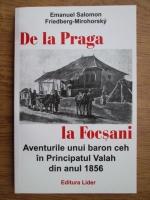 Emanuel Salomon, Friedberg Mirohorsky - De la Praga la Focsani. Aventurile unui baron ceh in Principatul Valah din anul 1856