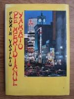 Anticariat: Florin Vasiliu - Pe meridianul Yamato
