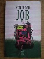 Anticariat: Florin Dumitrescu - Primul meu job