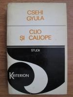 Csehi Gyula - Clio si Caliope sau despre limitele istoriei si literaturii