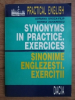 Adriana Groza Filip, Dorina Zaharescu - Synonyms in practice. Exercises