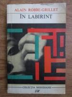 Anticariat: Alain Robbe Grillet - In labirint