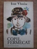 Anticariat: Ion Vlasiu - Copil fermecat